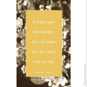 Wallpaper Psalm 139-5 2 download woordenvanwaarheid christelijke teksten op hout