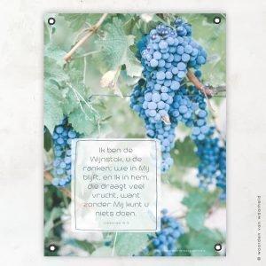 Druivenrank tuinposter woordenvanwaarheid christelijke teksten bijbeltekst
