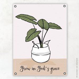 Plant mand Grace tuinposter woordenvanwaarheid christelijke teksten bijbeltekst