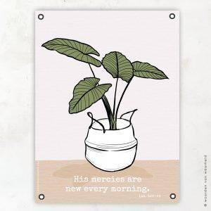 Plant mand Mercies tuinposter woordenvanwaarheid christelijke teksten bijbeltekst